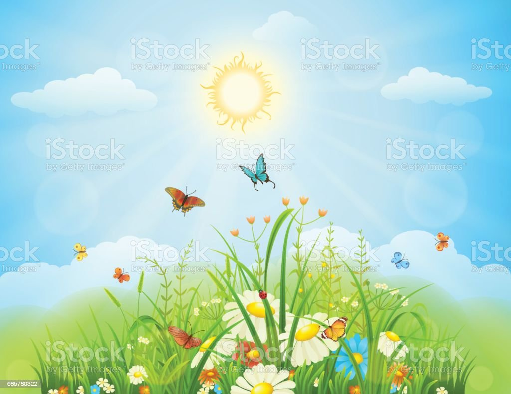 Summer or spring meadow royalty-free summer or spring meadow stock vector art & more images of abstract