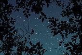 istock Summer outdoor starry sky vector wedding texture 1274188837