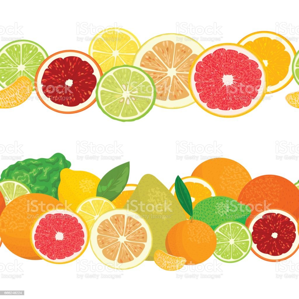 Summer postcard. Citrus fruits in garlands. vector art illustration