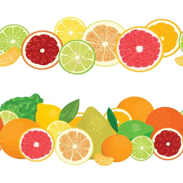 Summer postcard. Citrus fruits in garlands. vector art illustration