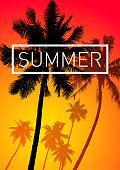 Summer themed palm tree background vector illustration