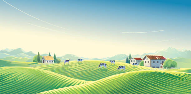Summer rural landscape with herd of cows vector art illustration