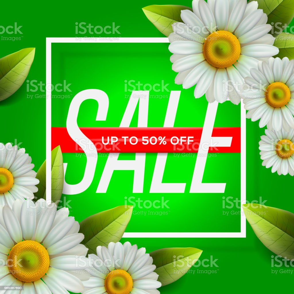 Summer Sale lettering and bouquet realistic daisy, camomile flowers on green background, online shopping, store, advertising poster, vector illustration. royalty-free summer sale lettering and bouquet realistic daisy camomile flowers on green background online shopping store advertising poster vector illustration stock vector art & more images of communication