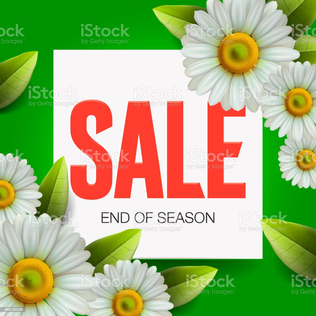 Summer Sale lettering and bouquet realistic daisy, camomile flowers on green background, online shopping, store, advertising poster, vector illustration. - Royalty-free Communication stock vector
