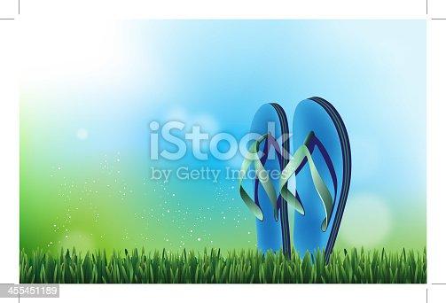 istock Summer Sandals 455451189