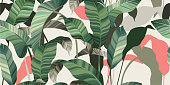 Green and pink leaves of palm trees and tropical plants on a light background. Vector illustration