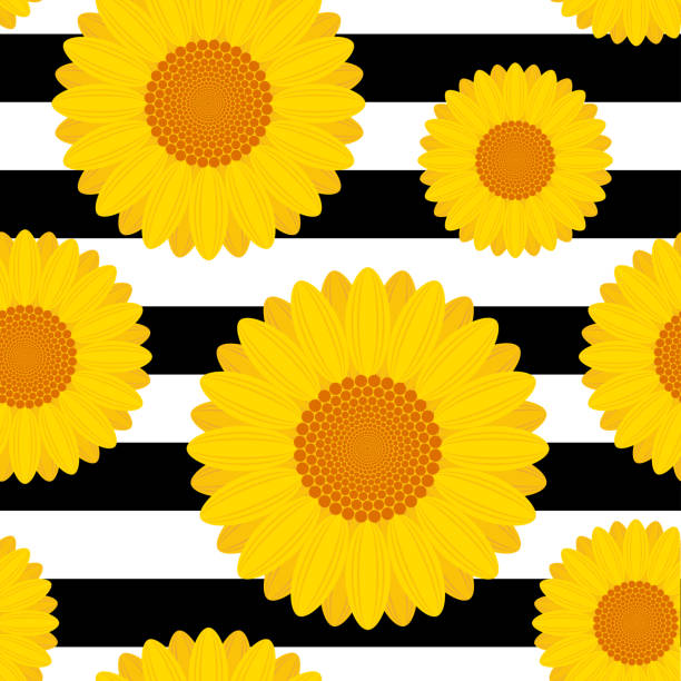 Black White Sunflower Garden Seamless Pattern Clip Art Vector Images Illustrations