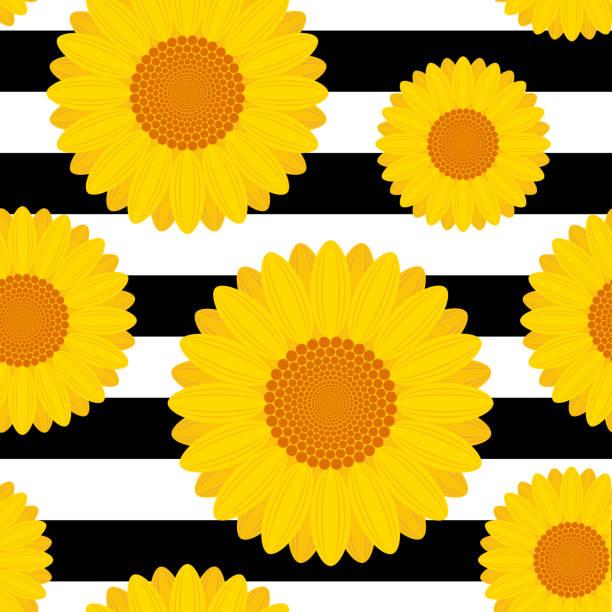 Black White Sunflower Garden Seamless Pattern Clip Art Vector Images Illustrations