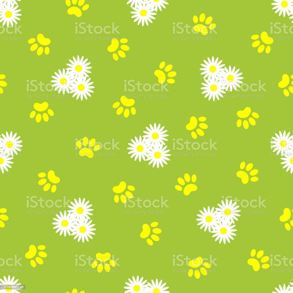 Daisies and animal paw prints on green summer background seamless...