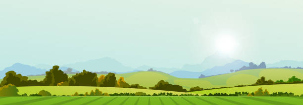 Summer Season Country Banner Illustration of a wide summer season country banner or header for web site valley stock illustrations