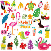 Summer set of Hawaiian symbols and elements- fruits , toucan, flamingo,ice cream and tropical leaves. Perfect for web, card, poster or t-shirt. Vector illustration