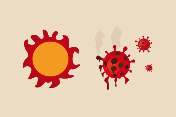 Summer sun light kill and reduce infection rate of Coronavirus COVID-19 outbreak crisis concept, Red heat hot sun shinning and burn to melt COVID-19 Coronavirus pathogen Summer sun light kill and reduce infection rate of Coronavirus COVID-19 outbreak crisis concept, Red heat hot sun shinning and burn to melt COVID-19 Coronavirus pathogen corona sun stock illustrations