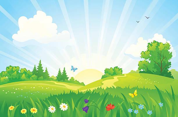 Summer sunrise landscape vector art illustration