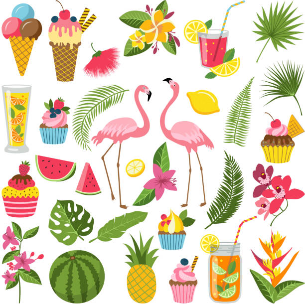 Summer time labels set for tropical party. Different icons in flat style. Drinks, watermelon, lemonade and flamingo Summer time labels set for tropical party. Different icons in flat style. Drinks, watermelon, lemonade and flamingo. Summer holiday and tropical object food and beverage. Vector illustration fruit clipart stock illustrations