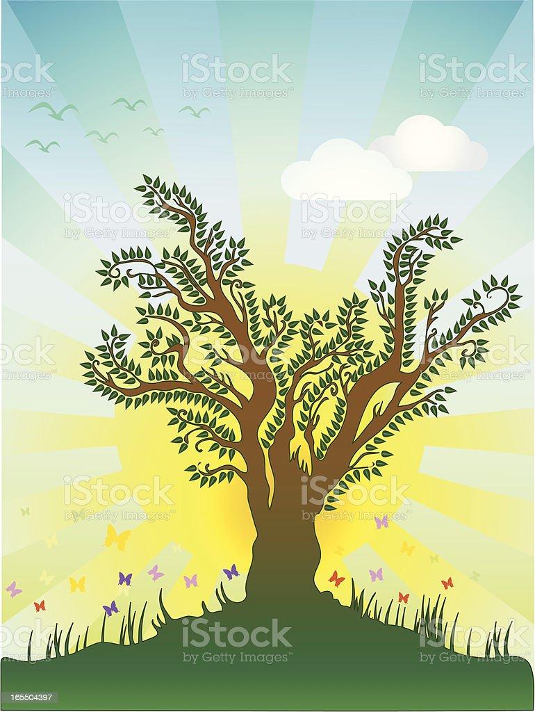 summer tree – Vektorgrafik