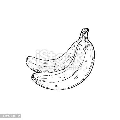 ᐈ Imagen De Dibujo De Banana Línea Simple Vector
