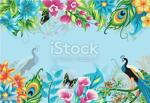 istock Summer tropical background banner with flowers and peacock 1205386914