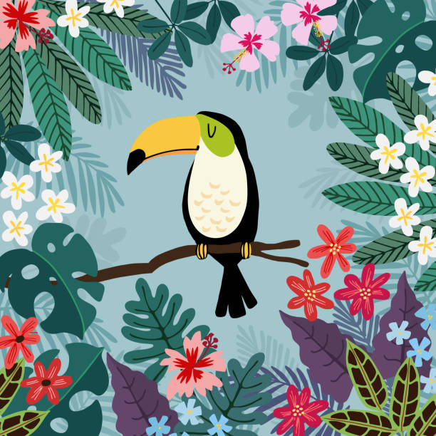 Summer tropical background. Toucan bird with palm and monstera leaves, hibiscus and plumeria flowers. Stock vector illustrations, flat design Summer tropical background. Toucan bird with palm and monstera leaves, hibiscus and plumeria flowers, stock vector illustrations, flat design. frangipani stock illustrations