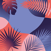 Summer tropical background with palm leaves and exotic plants. - Illustration