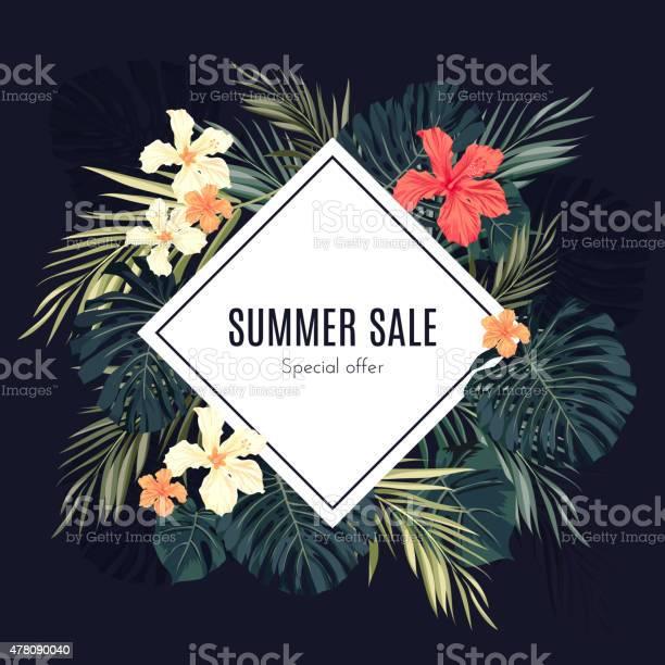 Summer tropical hawaiian background with palm tree leavs and exotic vector id478090040?b=1&k=6&m=478090040&s=612x612&h=wax6c7ejglbxf0pdj9k5rctsj 8gubvvfeld9oiwh0w=