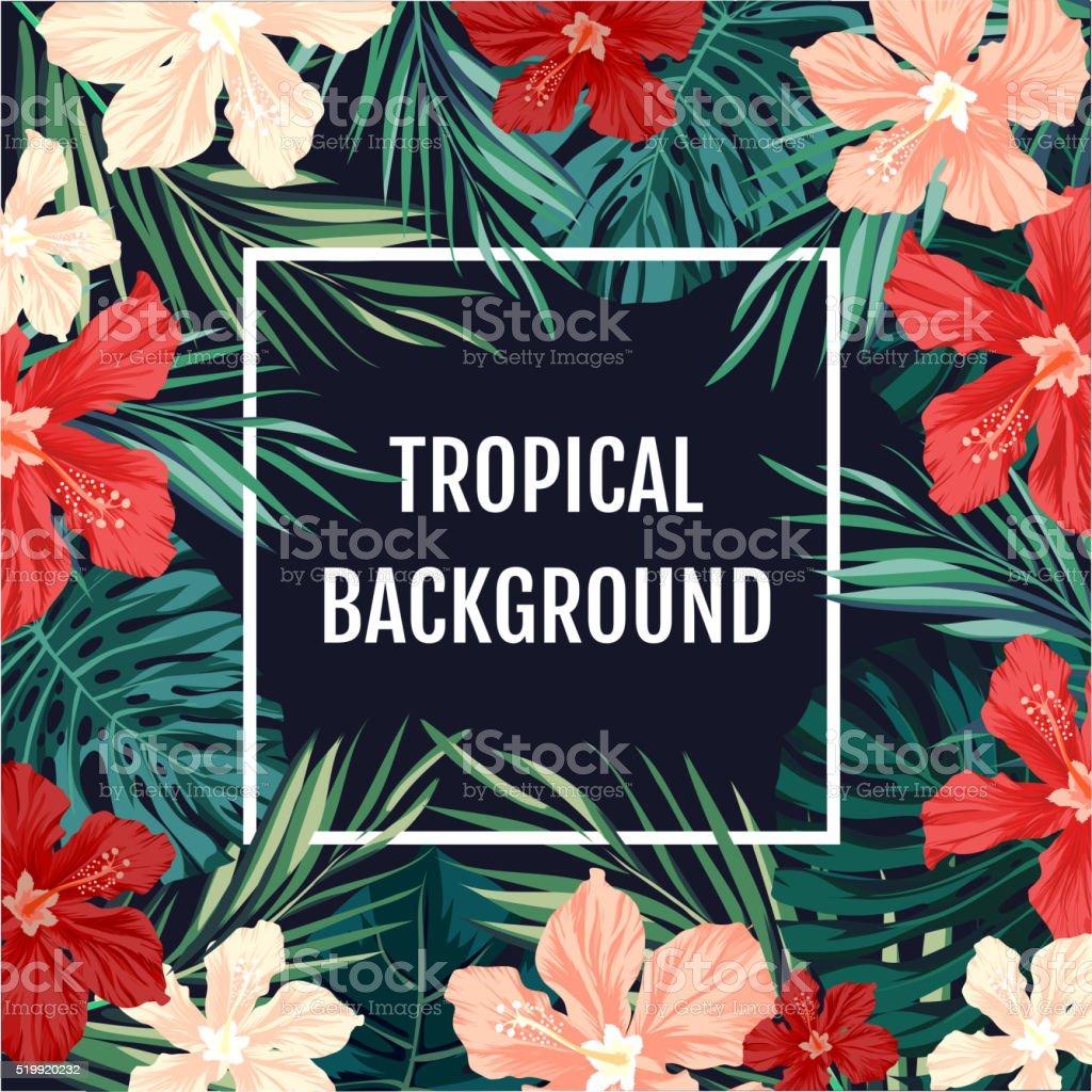 a190d36ec Fondo de verano hawaiana tropical con palmeras leavs y exóticos ilustración  de fondo de verano hawaiana