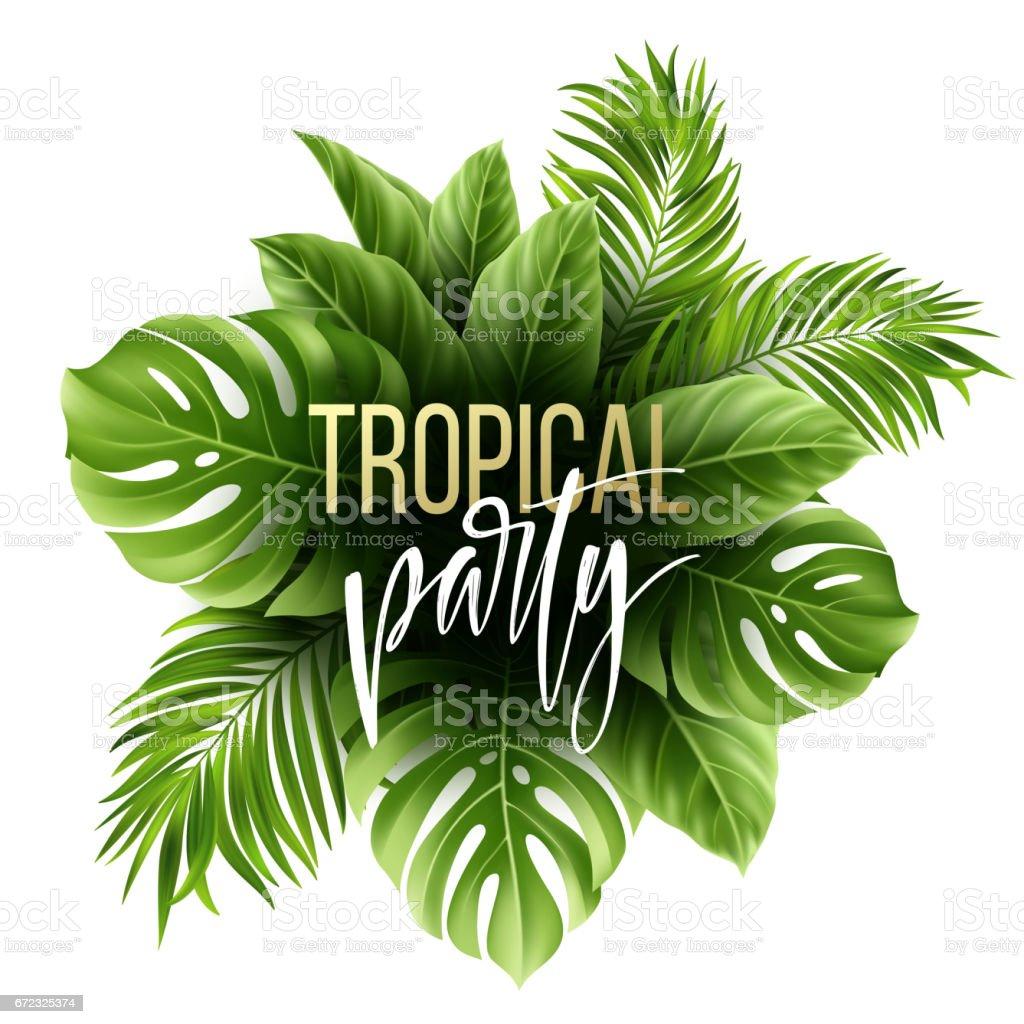 summer tropical leaf background with exotic palm leaves party