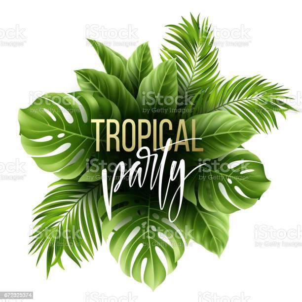 Summer tropical leaf background with exotic palm leaves party flyer vector id672325374?b=1&k=6&m=672325374&s=612x612&h=kwjfnaga er8xzfndrkpmrnmuoj7i67iniwv8o2v1po=