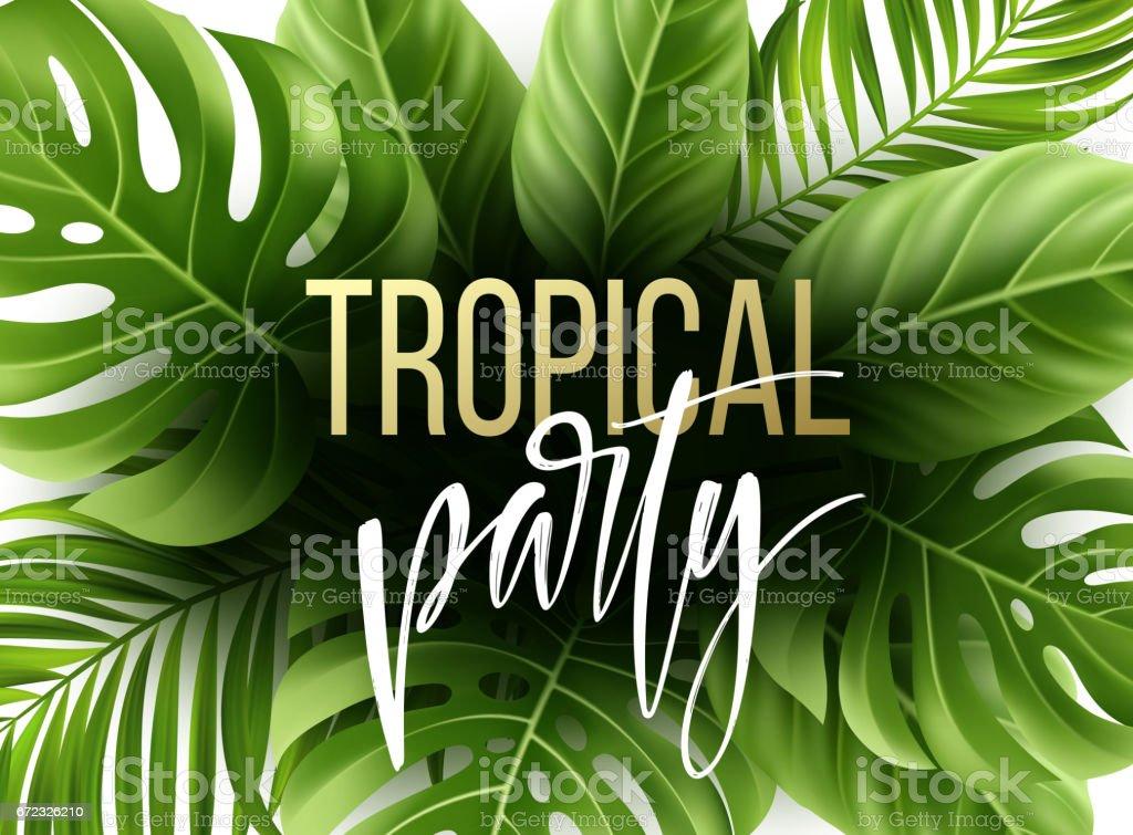 Fondo De árbol Tropical De Verano Con Palmeras Exóticas Hojas ...