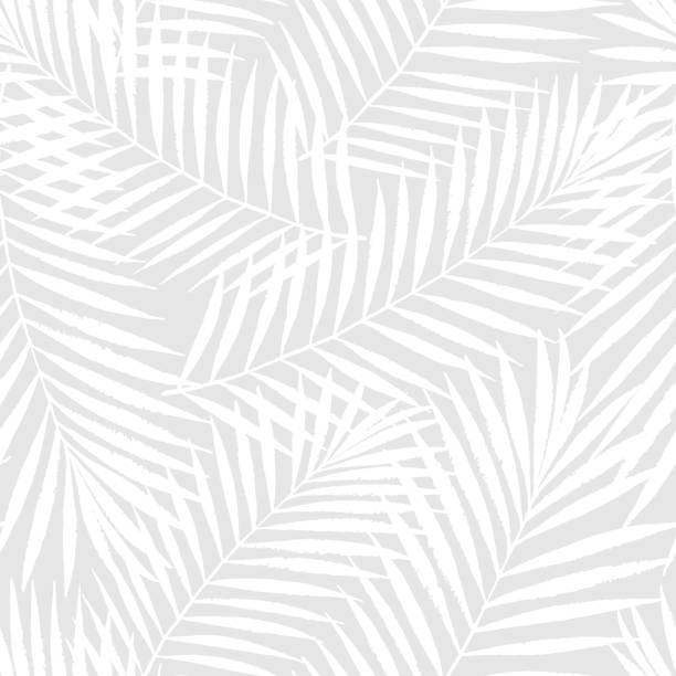 summer tropical palm tree leaves seamless pattern. vector grunge design for cards, web, backgrounds and natural product - бесшовный узор stock illustrations