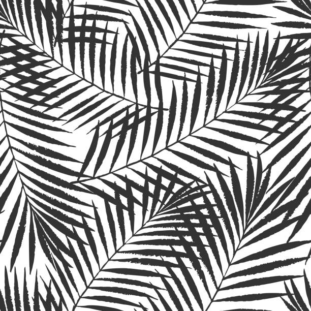summer tropical palm tree leaves seamless pattern. vector grunge design for cards, web, backgrounds and natural product - palm leaf stock illustrations, clip art, cartoons, & icons