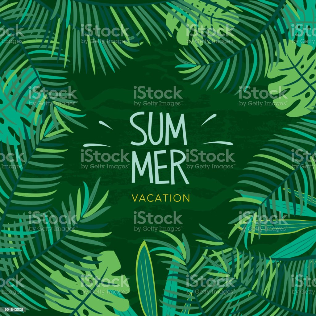 Summer tropical plant illustration royalty-free summer tropical plant illustration stock vector art & more images of backgrounds