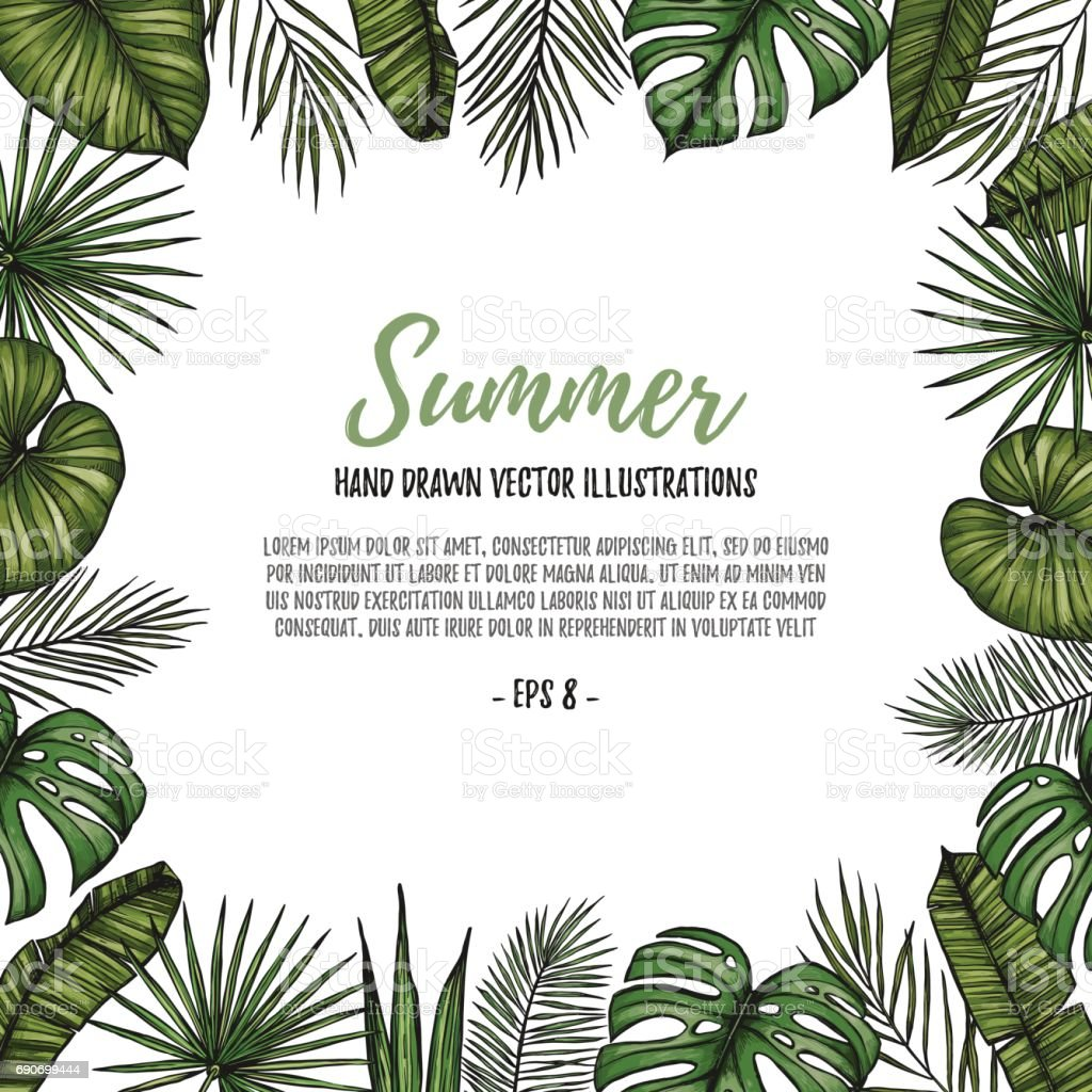 summer tropical postcard template frame with palm leaves hand