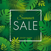 Summer tropical sale banner with palm leaves and exotic plants. Vector floral banner template - Illustration