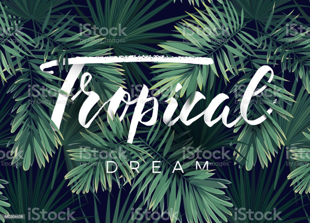 Summer tropical vector design for banner or flyer with dark green palm leaves and lettering royalty-free summer tropical vector design for banner or flyer with dark green palm leaves and lettering stock illustration - download image now