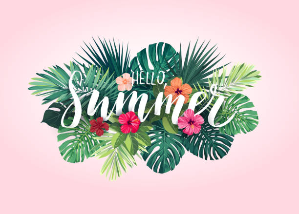 Summer tropical vector design for banner or flyer with exotic palm leaves, hibiscus flowers and handlettering Summer tropical design for banner or flyer with exotic palm leaves, hibiscus flowers and lettering. Vector illustration. tropical flower stock illustrations