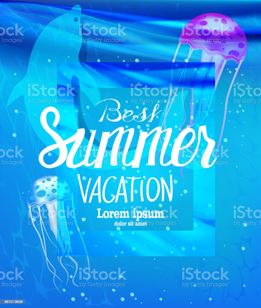 Summer vacation banner with jellyfishes and dolphin in a sea water. Vector illustration vector art illustration