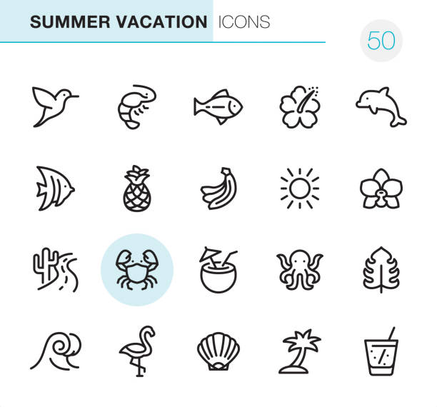 summer vacations - pixel perfect icons - wildlife travel stock illustrations, clip art, cartoons, & icons