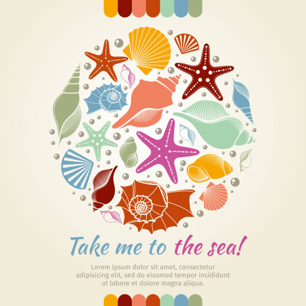 summer vector concept with shells and sea stars - seashell stock illustrations, clip art, cartoons, & icons