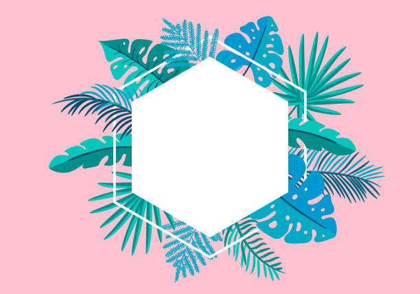 Summer Vector floral frame tropical leaves palm with place for text. color design elements for print, greeting card. isolated illustration on pink background Summer Vector floral frame tropical leaves palm with place for text. color design elements for print, greeting card. isolated illustration on pink background. idyllic stock illustrations
