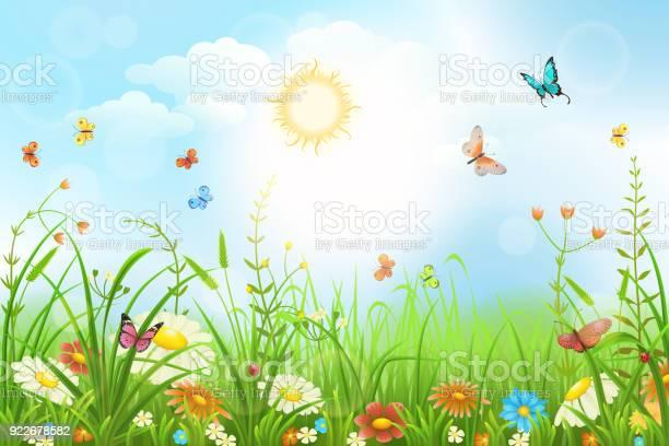 Summer vector meadow vector id922678582?b=1&k=6&m=922678582&s=612x612&h=h1xpwmaj kgk5og65rzqvievtp pb1faqubsffqrf5s=