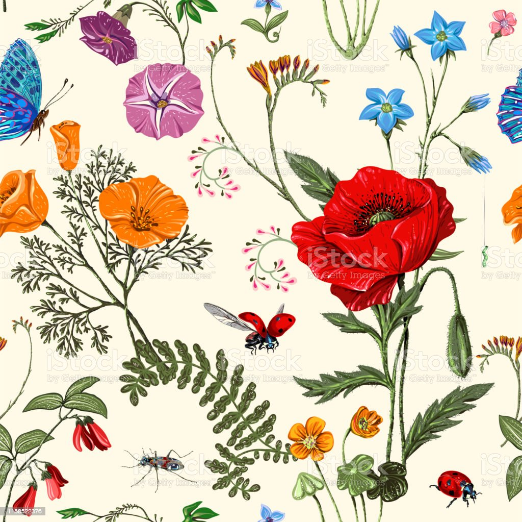 Summer Vector Seamless Pattern Botanical Wallpaper Plants Insects Flowers In Vintage Style Butterflies Beetles And Plants In The Style Of Provence Drawn Nature Wallpaper Summer Background Stock Illustration Download Image Now