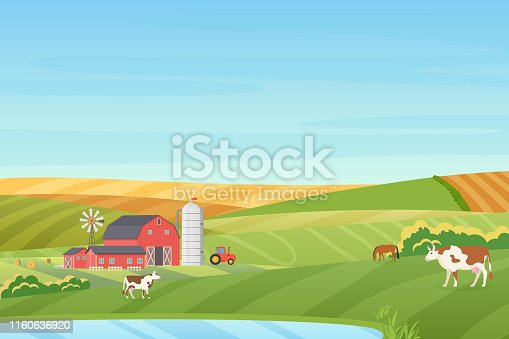 Summer warm weather farm coutryside landscape with eco cottage, barn, windmill, tractor, silage tower, cow, horse, green and orange fields near the blue clean lake flat vector illustration