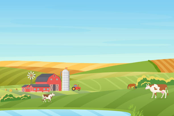 Summer warm weather farm coutryside landscape with eco cottage, barn, windmill, tractor, silage tower, cow, horse, green and orange fields near the blue clean lake flat vector illustration. vector art illustration