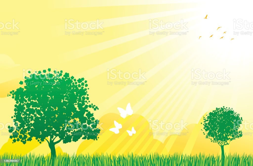 summer,spring green nature view with sun,butterfly,birds,trees royalty-free stock vector art