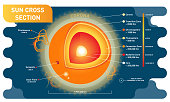 Sun cross section scientific vector illustration diagram with sun inner layers, sunspots, solar flare and prominence.