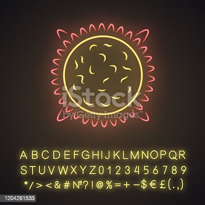 istock Sun neon light icon. Star in Solar System center. Hot plasma sphere. Space exploration. Astronomy, astrology. Glowing sign with alphabet, numbers and symbols. Vector isolated illustration 1204261533