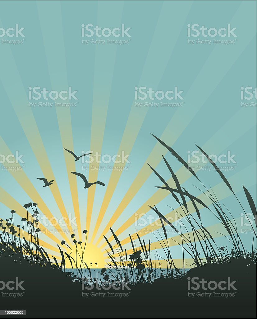 A sun ray sunset picture with blue sky vector art illustration