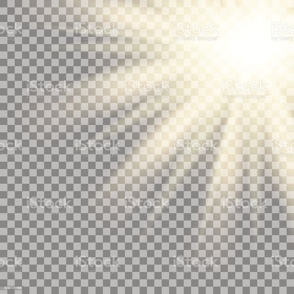 Sun Rays On Transparent Background Vector Royalty Free