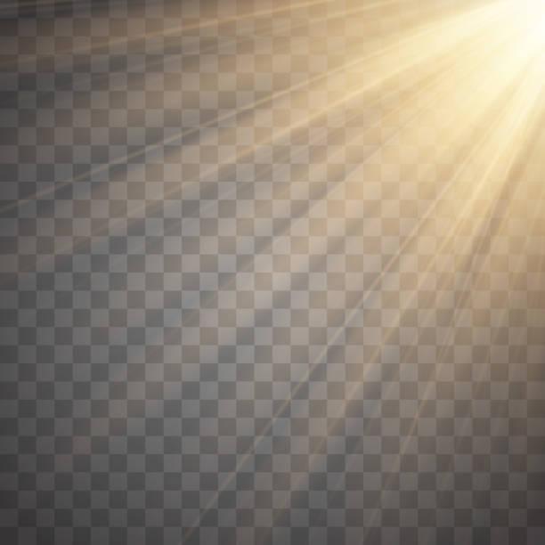 Sun rays with beams isolated on transparent background. Golden spotlight. Sun flash. Vector illustration Rays of light isolated on transparent background. Golden spotlight. Vector illustration heaven stock illustrations