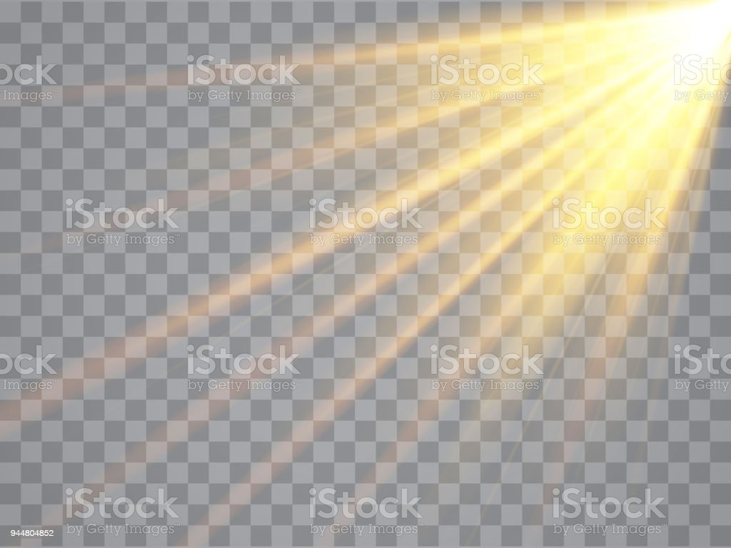Sun Rays With Beams Isolated On Transparent Background Golden Spotlight Flash Vector